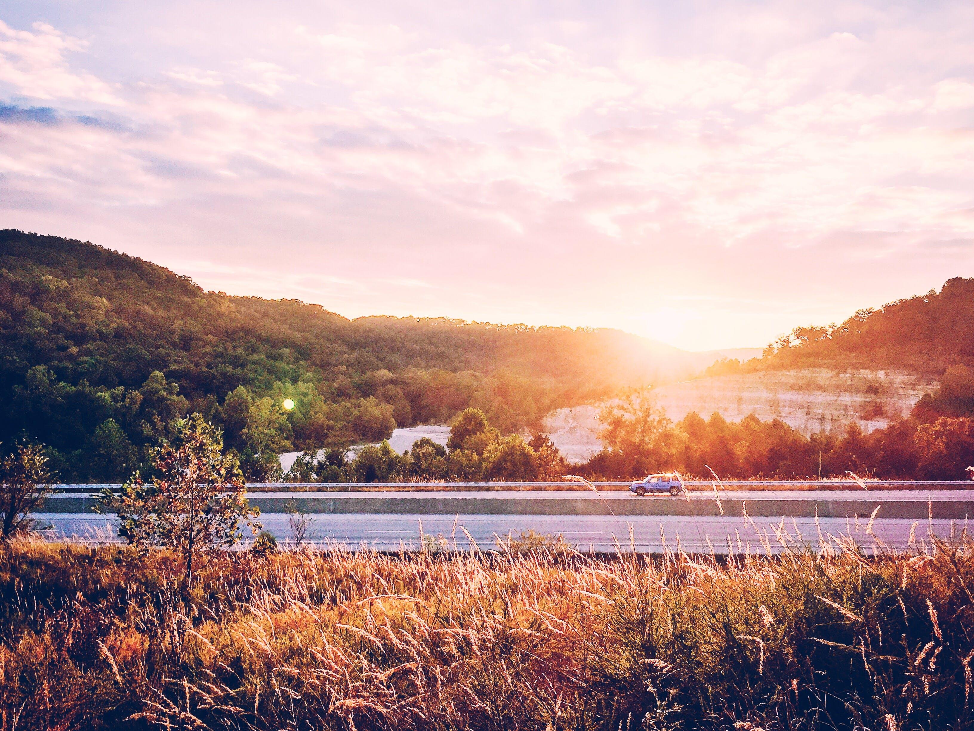 Kostenloses Stock Foto zu auto, autobahn, bäume, infrastruktur