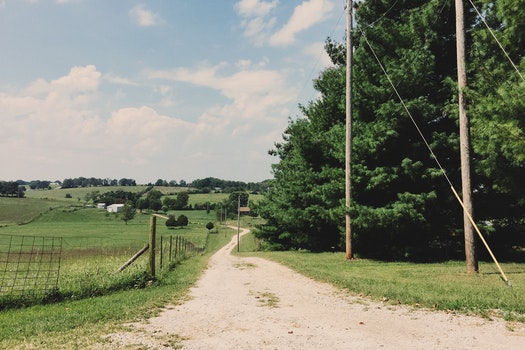 Free stock photo of road, field, trees, countryside
