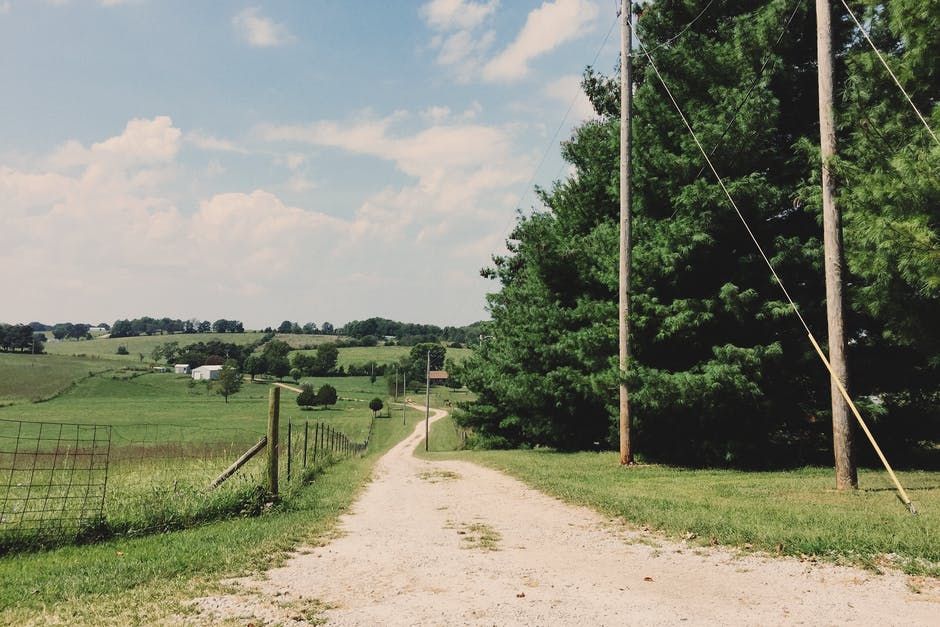New free stock photo of road, field, trees