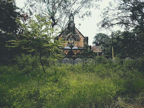 Gratis arkivbilde med arkitektur, dagslys, gress, grønn