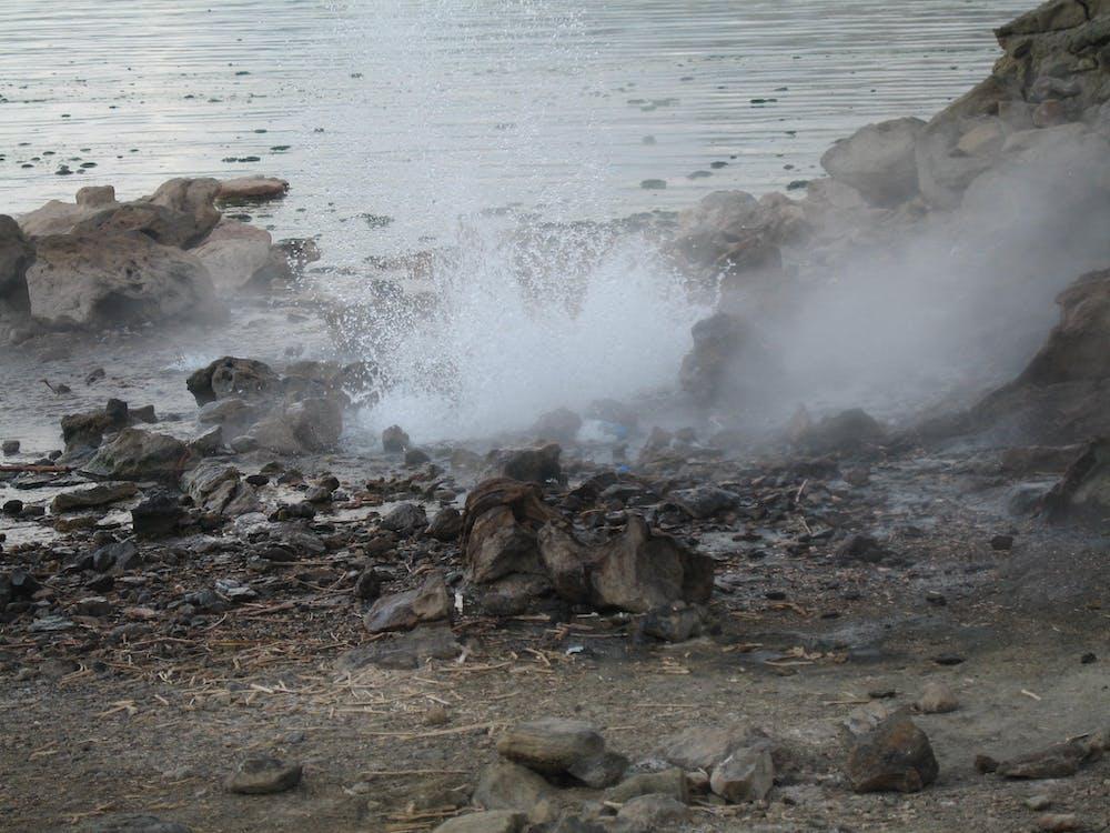 Free stock photo of lake bogoria