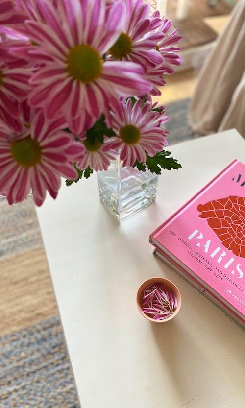 Ilmainen kuvapankkikuva tunnisteilla espressokuppi, kaunis koti, kaunis kukka