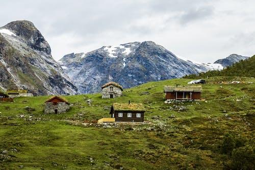 Ingyenes stockfotó festői, fjord, hegy, moha témában
