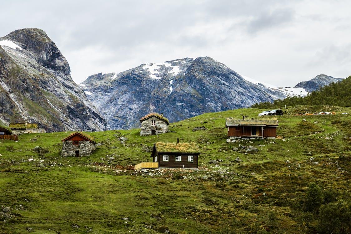 bjerg, Fjord, grønt tag