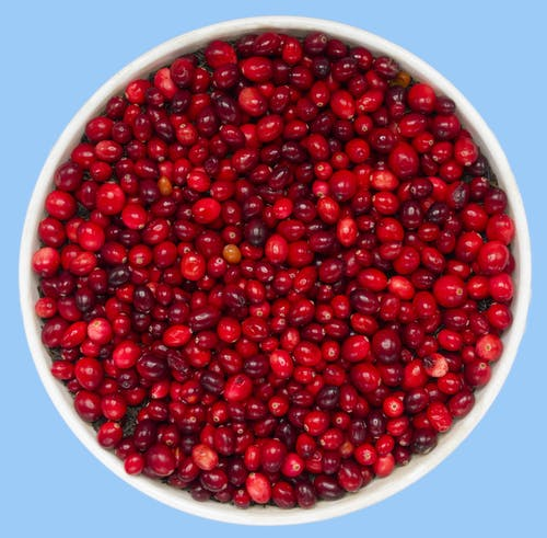 Free stock photo of antioxidants, christmas, cranberries, cranberry relish