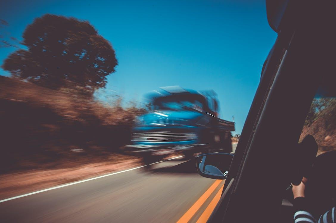 accéléré, arbres, asphalte
