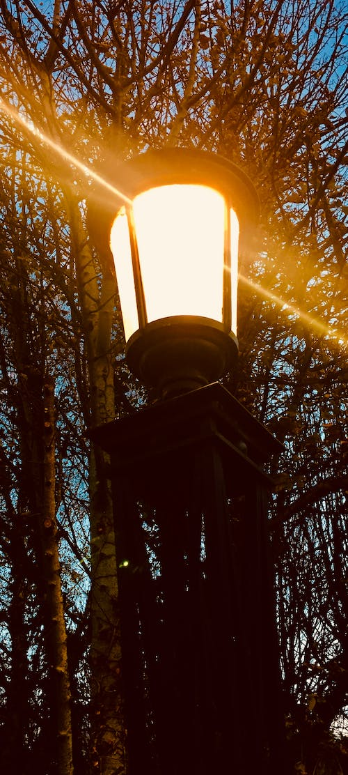 Free stock photo of lamp, street lamp