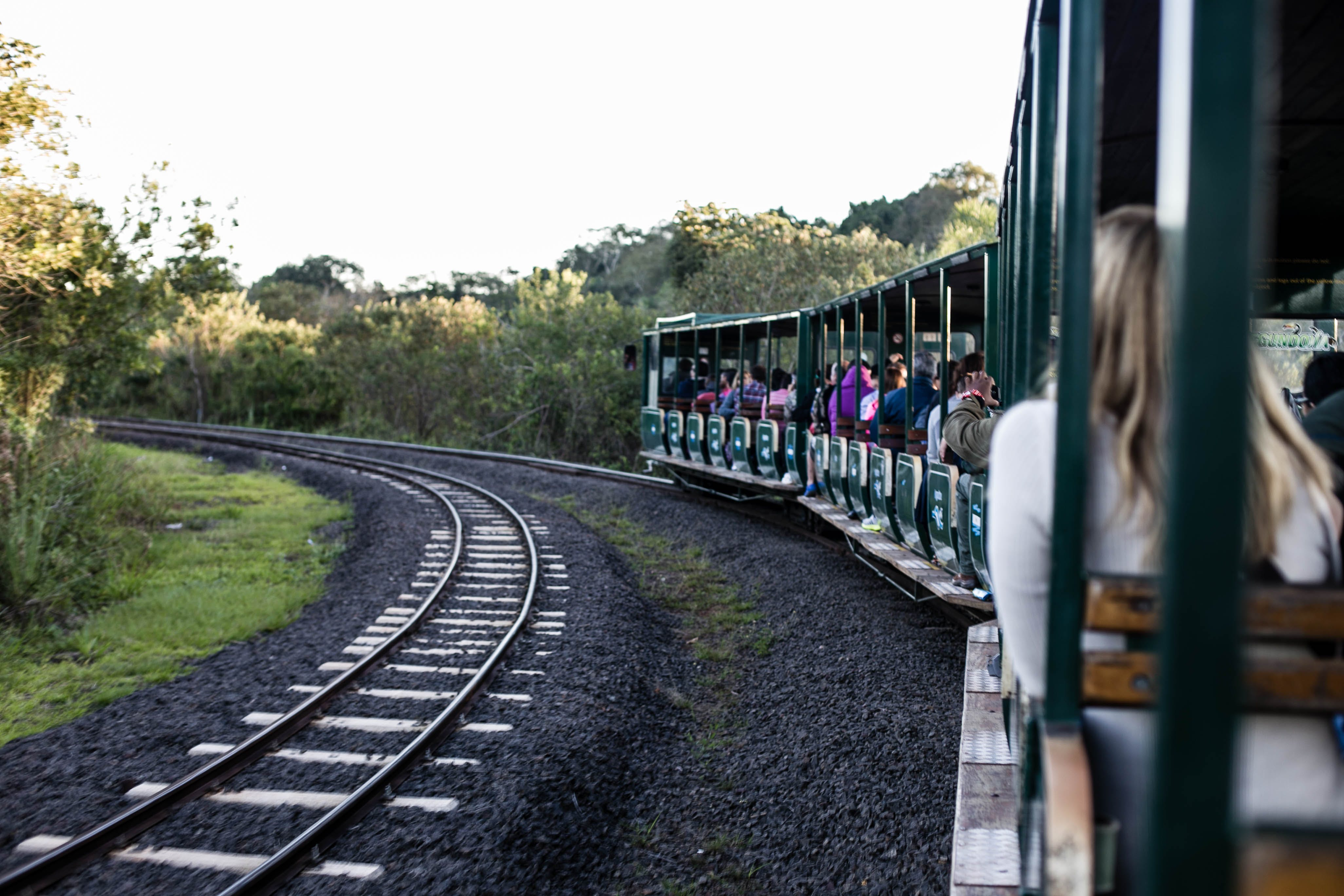 Group of People Riding Train