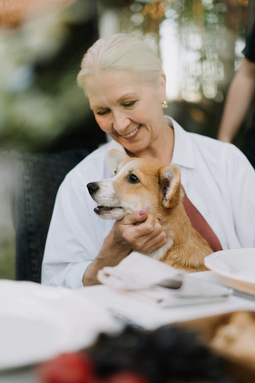 Smiling Elderly Woman Holding Her Pet