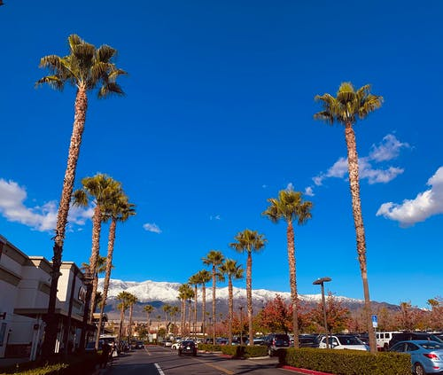 Free stock photo of blue sky, california, city street