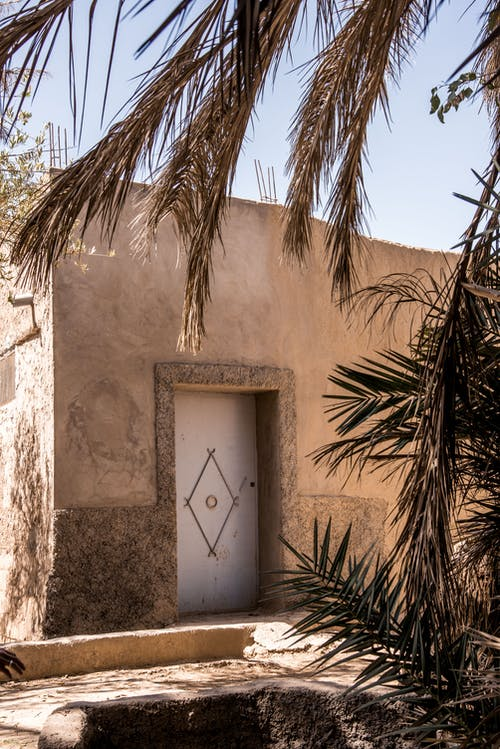 Dry palm trees growing near aged simple oriental house against cloudless blue sky