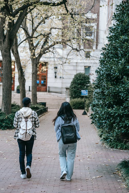 Full body back view females with backpacks wearing casual outfits strolling together on paved walkway towards modern building
