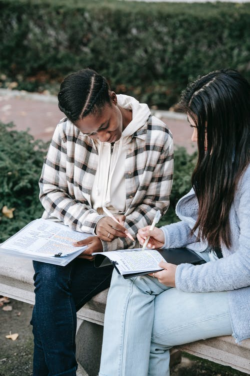 Concentrated diverse female students in casual outfits working on home  assignment together and sitting on bench in park