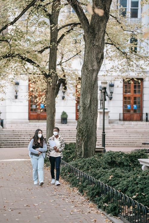 Diverse students walking in university park together