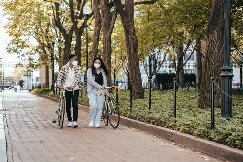 Full body of diverse women in masks with bicycles walking on paved walkway along trees in park during coronavirus period