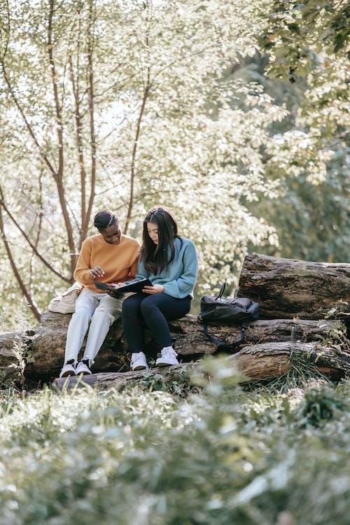 Hombre Y Mujer, Sentado, En, Marrón, Registro