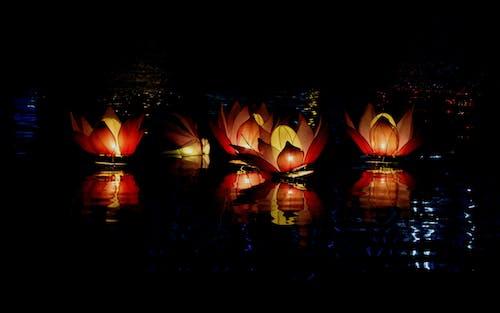 Ingyenes stockfotó absztrakt fotó, árnyék, buddhizmus, éjszaka témában