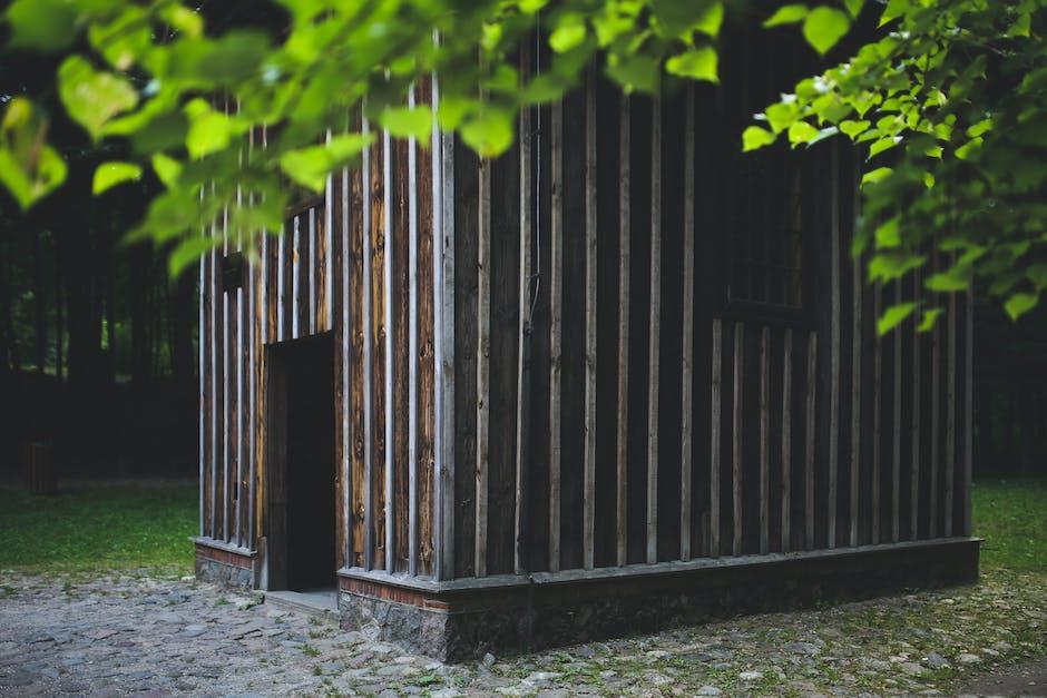 New free stock photo of wood, light, landscape