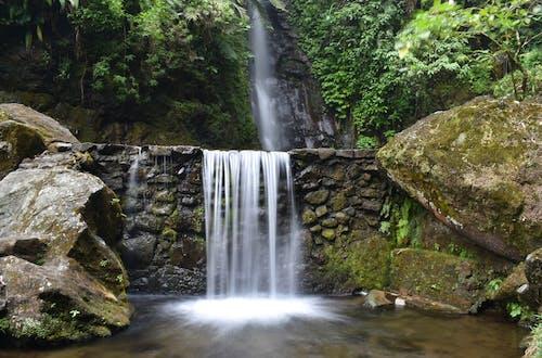 Безкоштовне стокове фото на тему «вода, Водоспад, водоспади, потік»