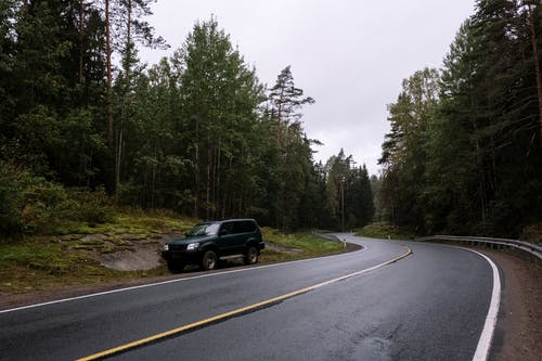 Black Suv on Roadside Between Green Trees