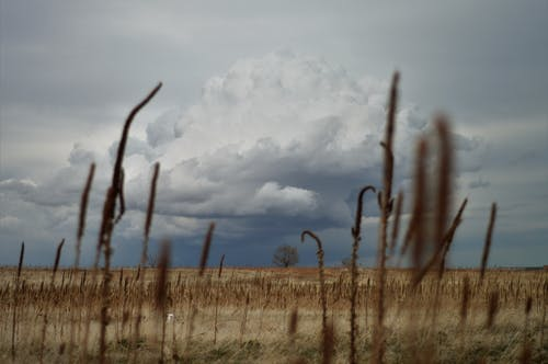 Free stock photo of Thunder cloud on the plains of Colorado