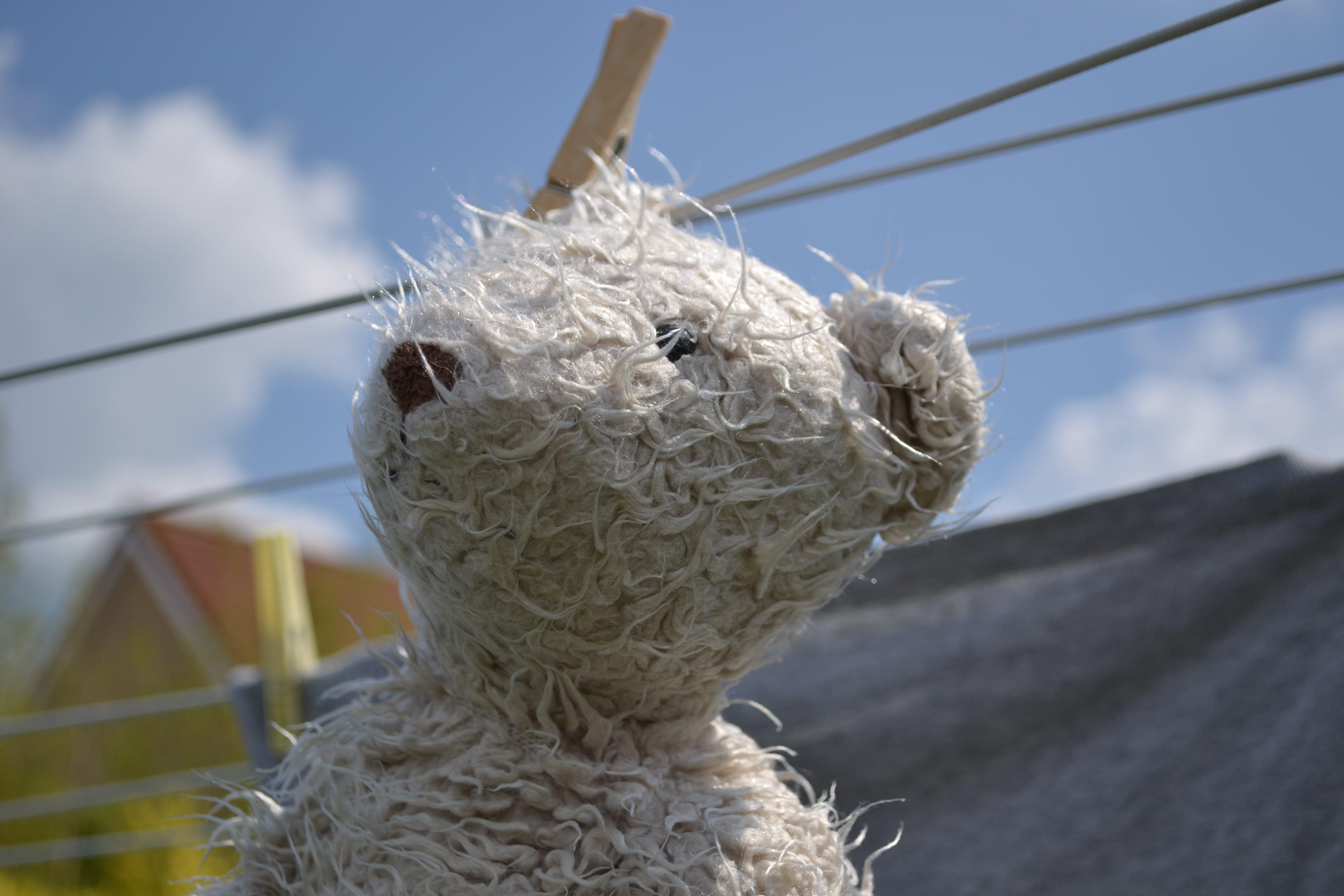 White Bear Plush Toy