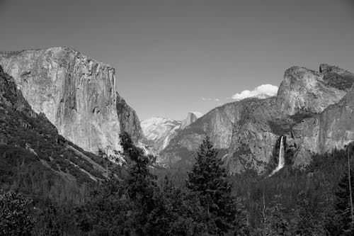 Grayscale Photo of Trees and Mountains