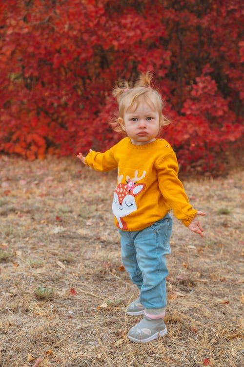 休閒, 兒子, 兒童, 公園 的 免費圖庫相片