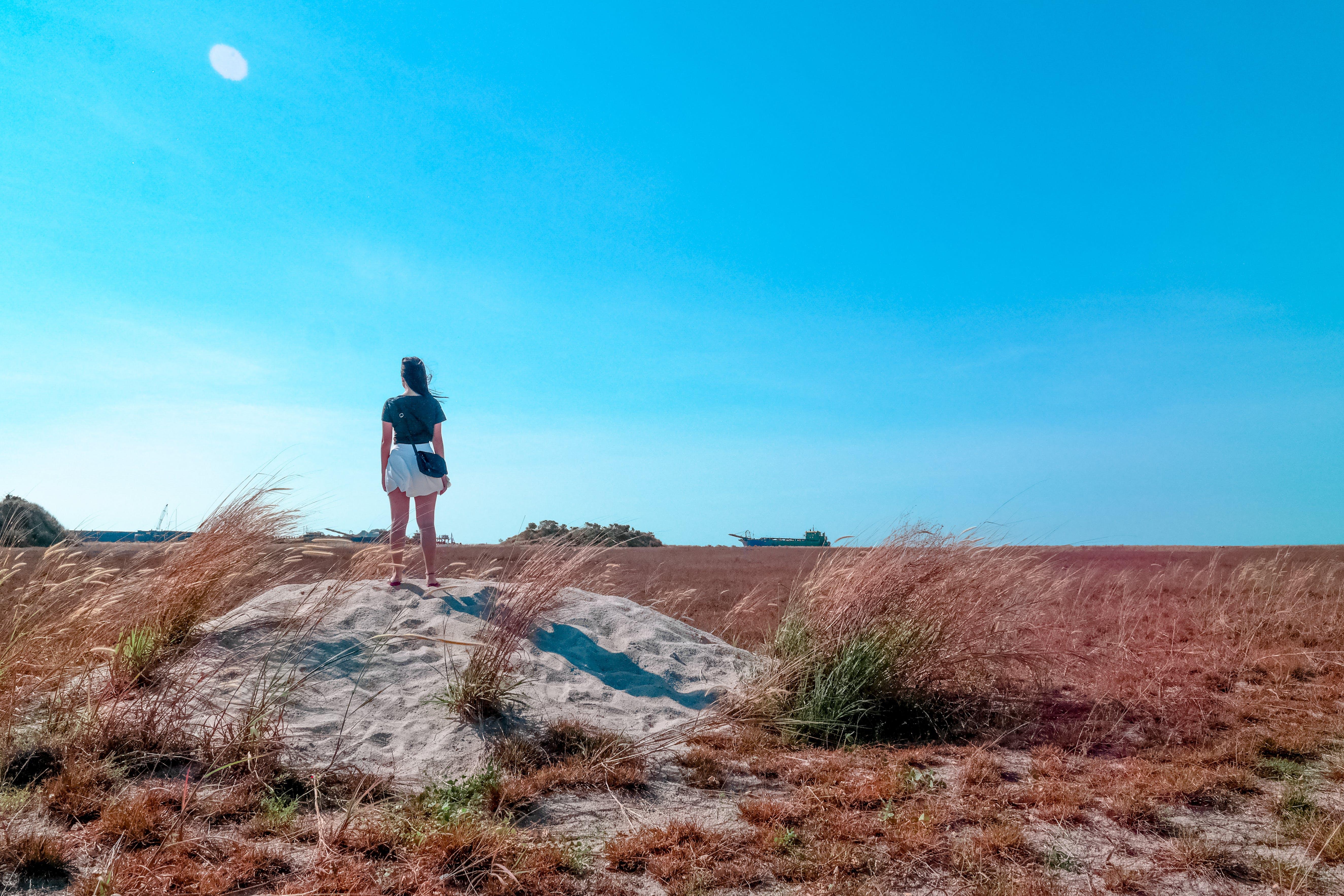 Woman Standing Beside Wheat Field