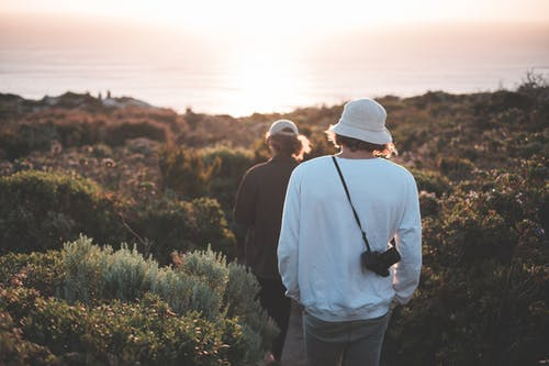 Anonymous hikers walking through bushy terrain towards sea in evening