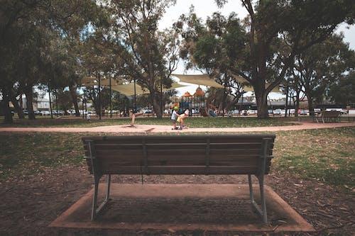 Houten Bankje In Park Met Spelende Kinderen