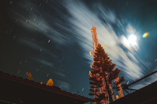 Free stock photo of sky, night, clouds, tree