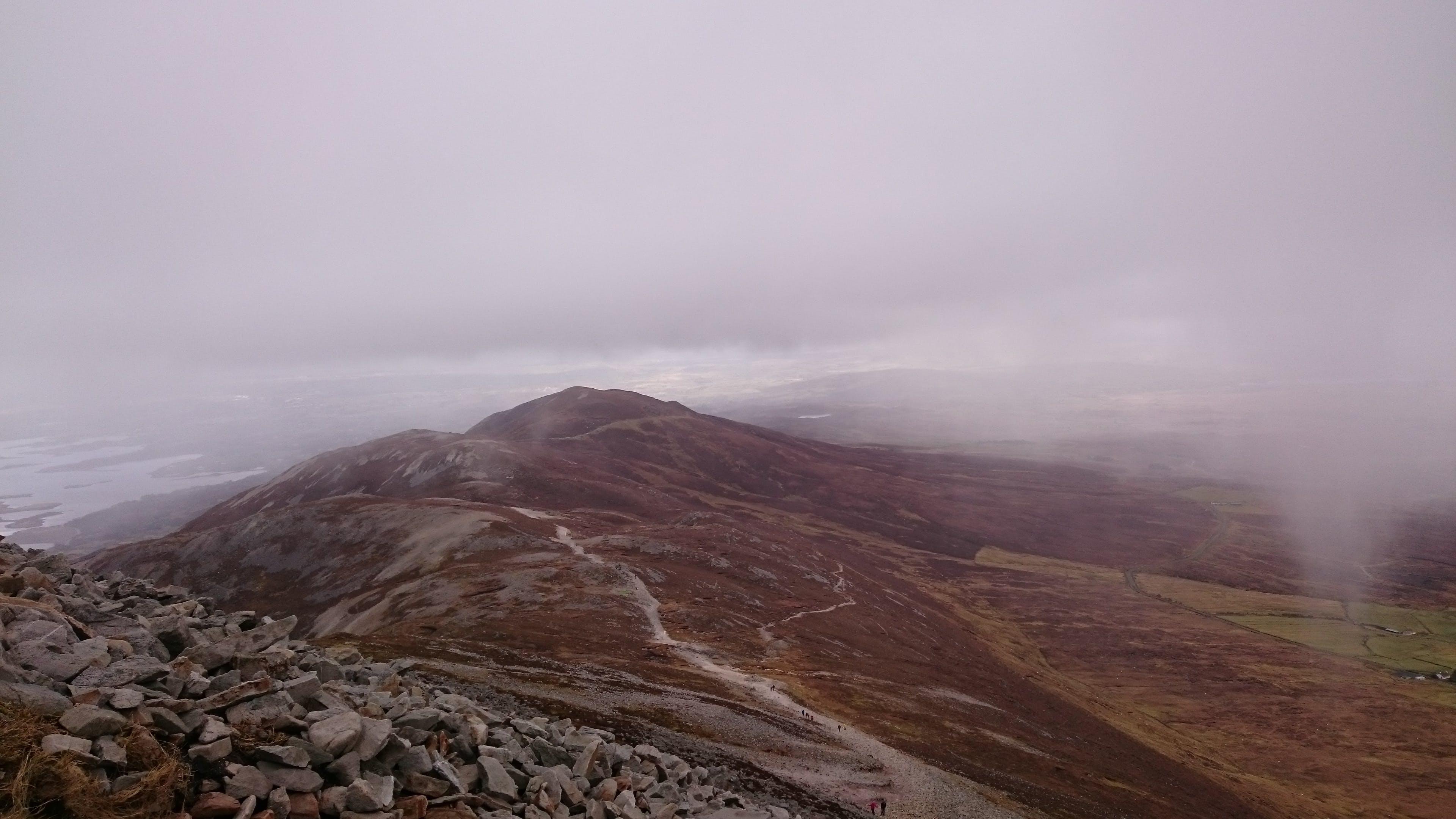 fog, foggy, landscape