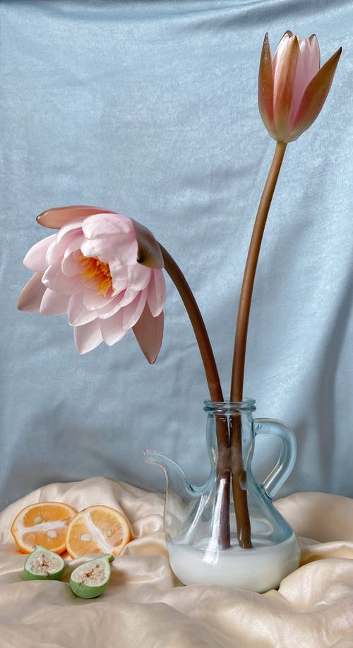 Composition of glass pitcher with delicate flowers with pink petals placed on blanket near sliced fruits against  gray textile