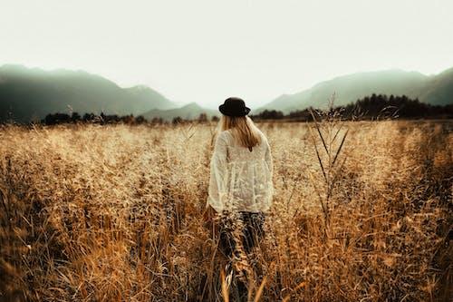 Fotobanka sbezplatnými fotkami na tému dievča, hmlistý, hory, hracie pole