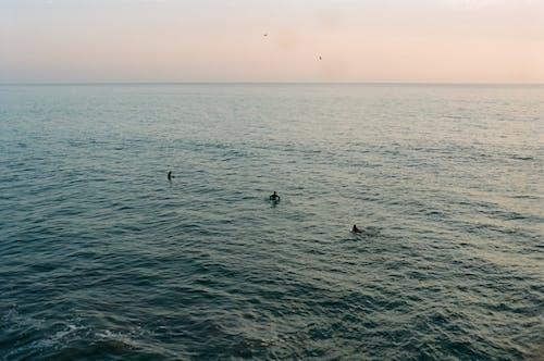 Бесплатное стоковое фото с 35 мм, dawn patrol, portra 400