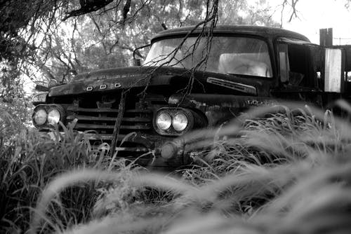 Free stock photo of abandoned, decay, forgotten