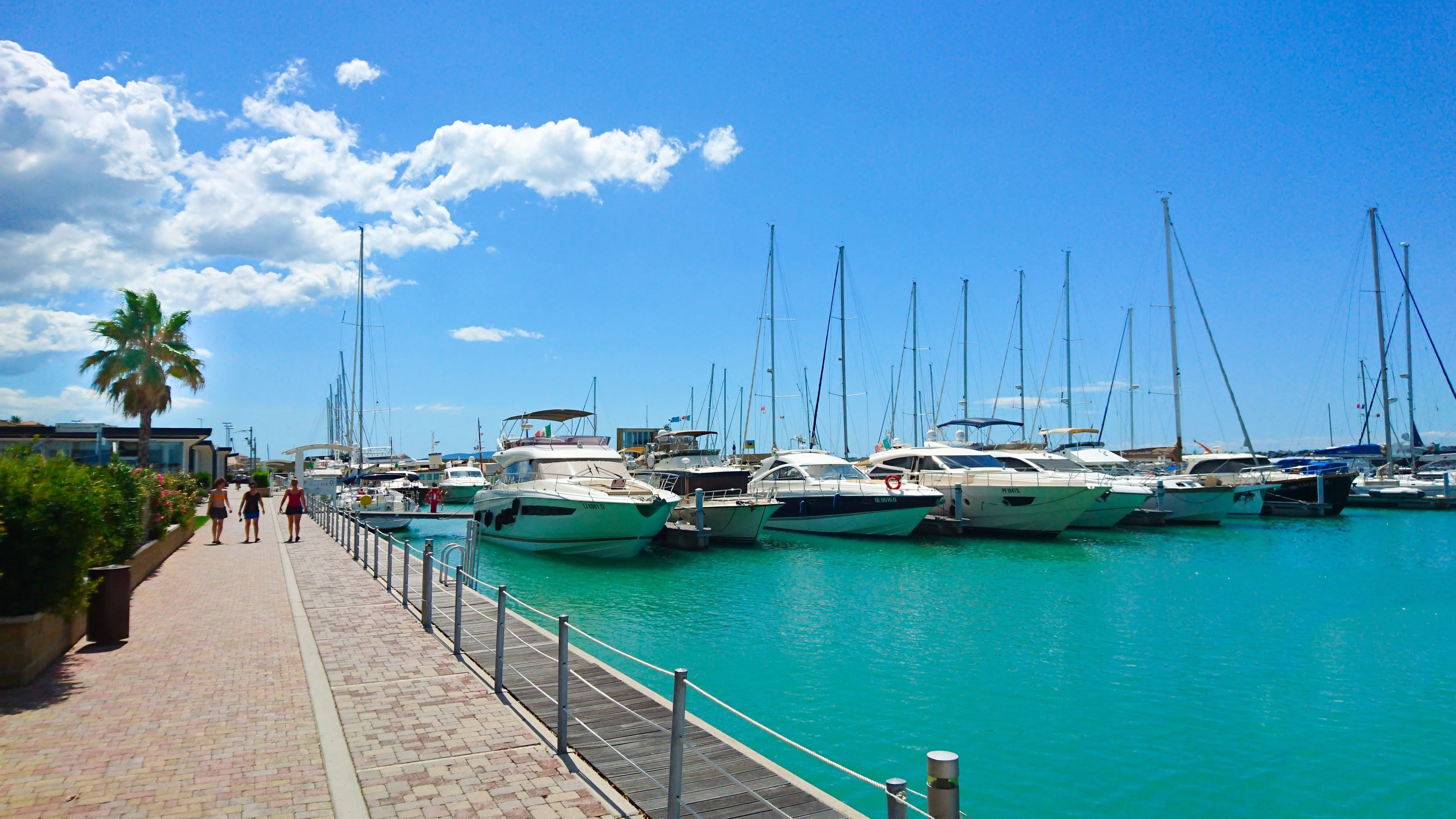 Free stock photo of water, boats, sailboats, summer