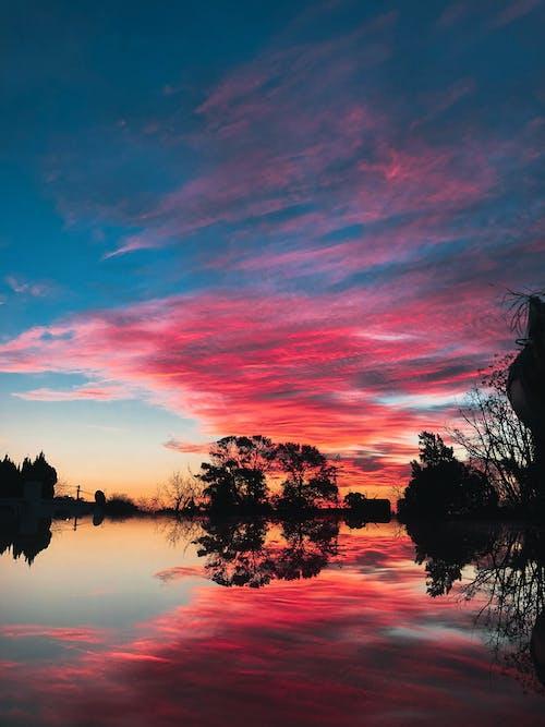 Free stock photo of Atardecer, dawn, mirrored