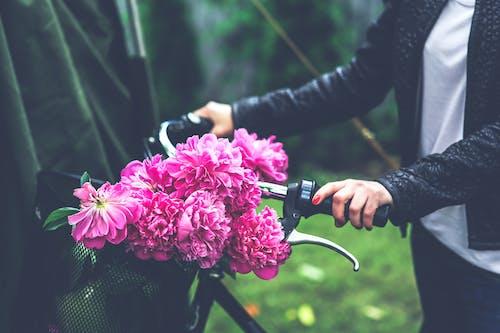 Ảnh lưu trữ miễn phí về bó hoa, cánh hoa, cỏ, con gái