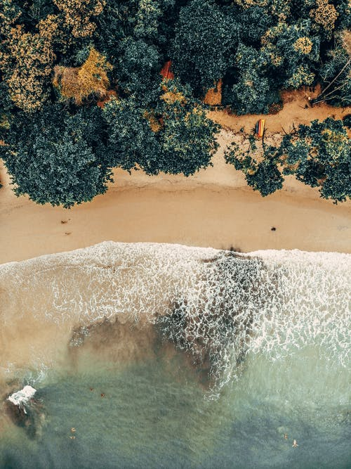 Aerial view of clear seawater with foam rolling on sandy coast covered with lush tropical plants