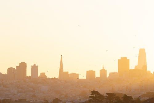 Darmowe zdjęcie z galerii z kalifornia, miasto, san francisco