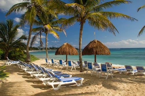 White and Brown Beach Lounge Chairs Near Beach