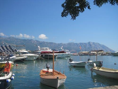 Free stock photo of boat, port