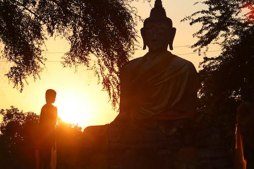 Free stock photo of buddha, image