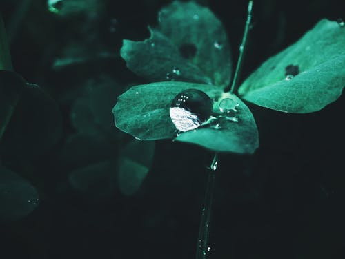 H2O, 人, 光 的 免費圖庫相片