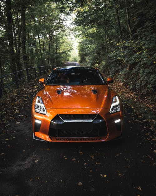 Modern sport automobile with shiny headlights and powerful bumper on asphalt roadway in lush forest