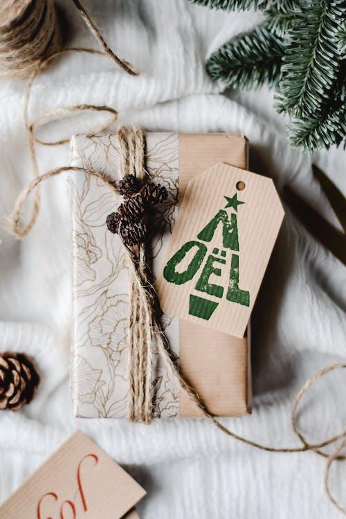 가문비, 가족, 겨울, 나무의 무료 스톡 사진