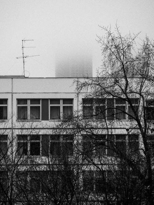 Безкоштовне стокове фото на тему «архітектура, Будівля, вираз, вікно»