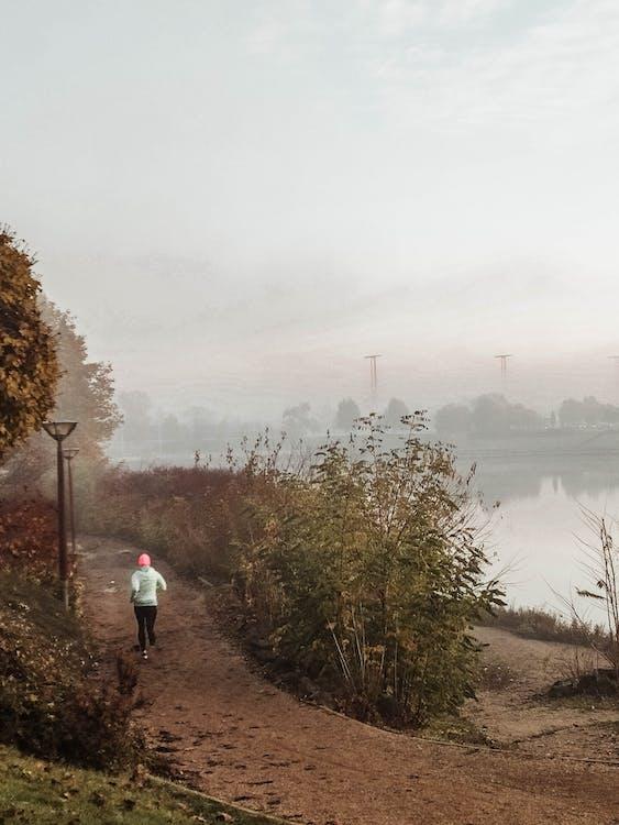 多瑙河, 日出的颜色, 早上 的 免费素材图片